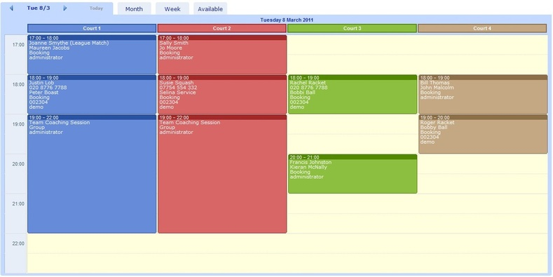 Example of the Daily View of the Schedule